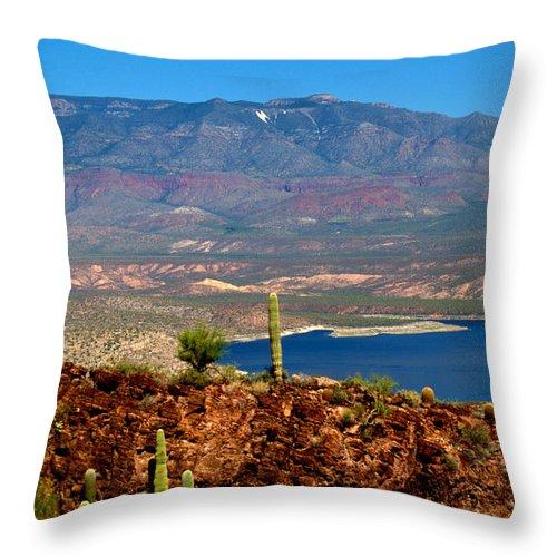 Desert Throw Pillow featuring the photograph Desert Lake by Bob Welch