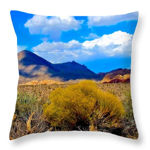 Desert Throw Pillow featuring the photograph Desert View by Bob Welch