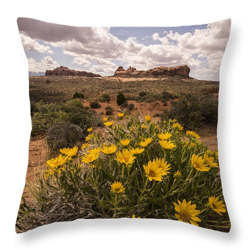 Spring Throw Pillow featuring the photograph Desert Wildflowers In Spring by Rachel Cash