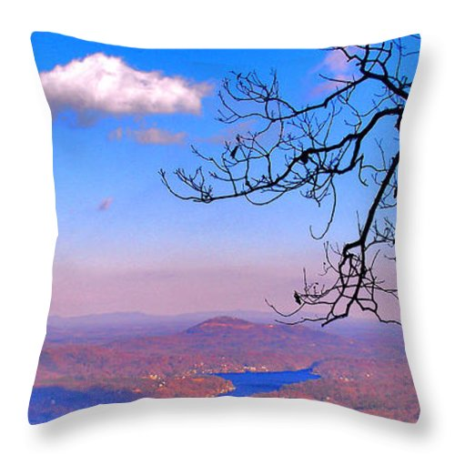 Landscape Throw Pillow featuring the photograph Detail From Reaching For A Cloud by Steve Karol