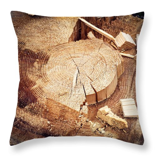 Circle Throw Pillow featuring the photograph Detail On Spruce Stump by Jozef Jankola