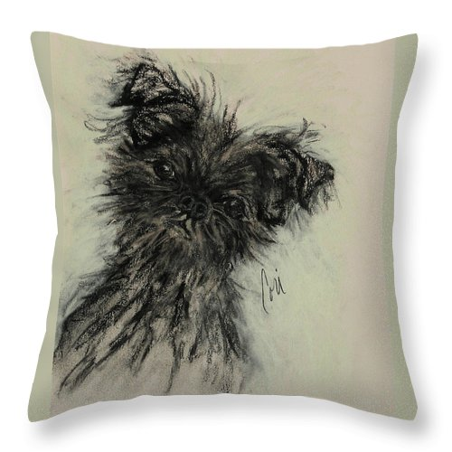 Affenpinscher Throw Pillow featuring the drawing Devil Wears Black by Cori Solomon