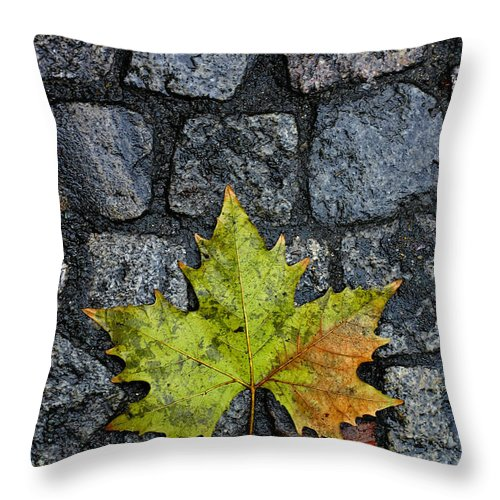 Nature Throw Pillow featuring the photograph Deville by Skip Hunt