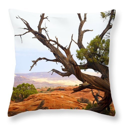 Southwest Art Throw Pillow featuring the photograph Devils Garden 2 by Marty Koch