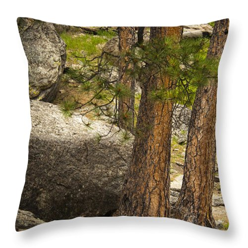 Wyoming Throw Pillow featuring the photograph Devils Tower Trees by Chad Davis