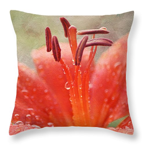 Flower Throw Pillow featuring the photograph Dew Drops Shining In The Sun by Maria Angelica Maira