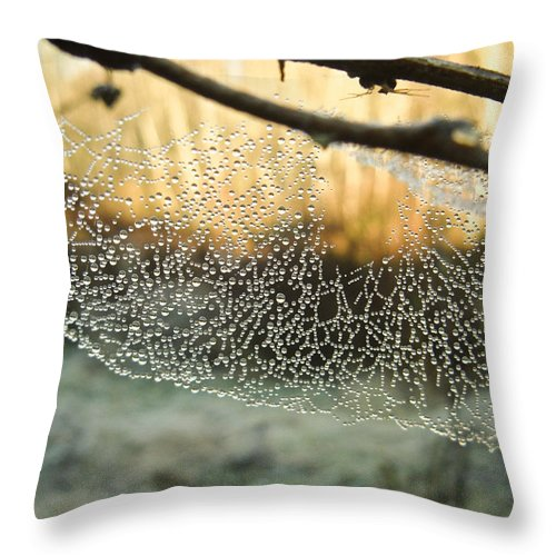 Spider Throw Pillow featuring the photograph Dew by Herman Robert