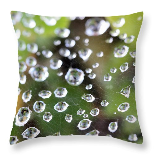 Dewdrops Throw Pillow featuring the photograph Dewdrops by Mary Haber