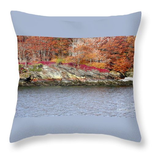 Tree Throw Pillow featuring the photograph Diamond Island-Mineral Deposits in Granite by Faith Harron Boudreau