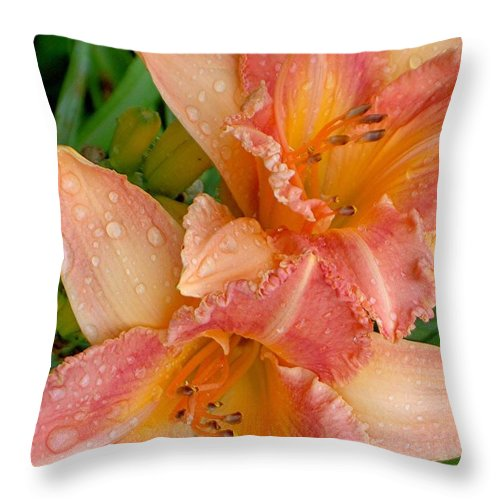 Rain Throw Pillow featuring the photograph Diamonds And Lilies by Carolyn Jacob