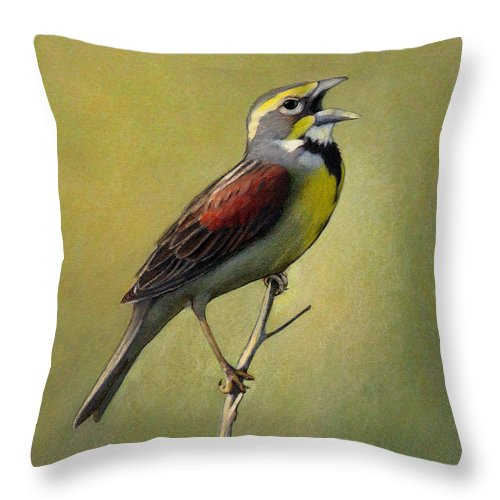 Birds Throw Pillow featuring the drawing Dickcissel Summer Song by Bruce Morrison