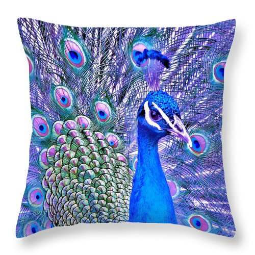 Contemporary Throw Pillow featuring the photograph Did You Put Artificial Colors In My Food by Margaret Bobb
