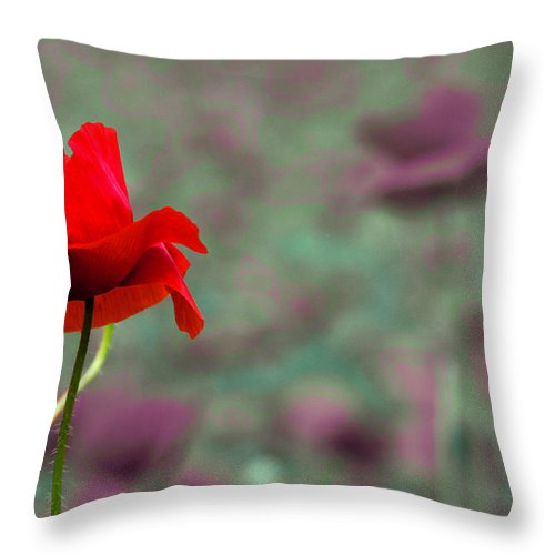 Poppy Throw Pillow featuring the photograph Different 2 by Wolfgang Stocker