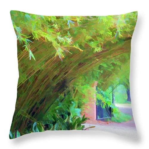 Landscape Throw Pillow featuring the photograph Digital Bamboo Rip Van Winkle Gardens by Chuck Kuhn