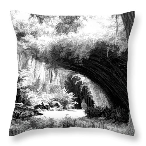 Landscape Throw Pillow featuring the photograph Digital Paint Black White Landscape Louisiana by Chuck Kuhn