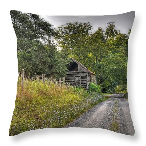 Landscape Throw Pillow featuring the photograph Dirt Roads by Todd Hostetter
