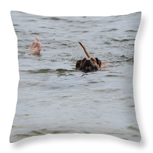 Feet Throw Pillow featuring the photograph Dirty Water Dog And Feet by Rob Hans