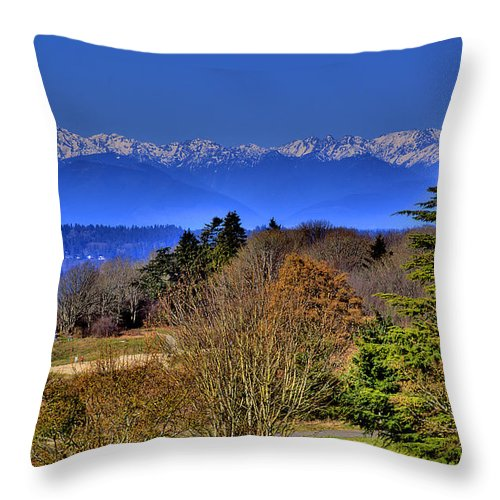 Photo Throw Pillow featuring the photograph Discovery Park No.2 by David Patterson