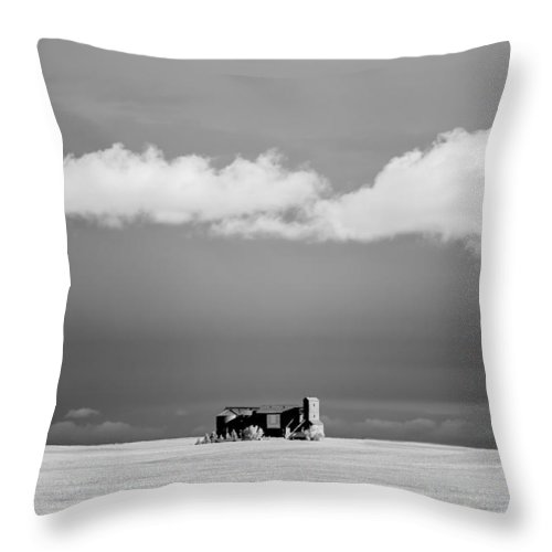 Grain Elevator Throw Pillow featuring the photograph Distant Grain Elevator by Todd Klassy