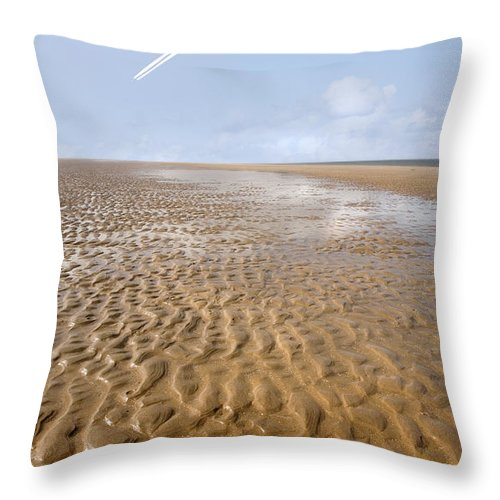 Travel Throw Pillow featuring the photograph Distant Horizon by Mal Bray