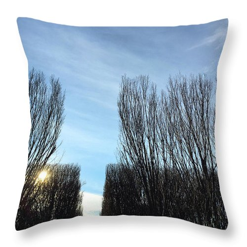 Trees Throw Pillow featuring the photograph Divide by Ceil Diskin