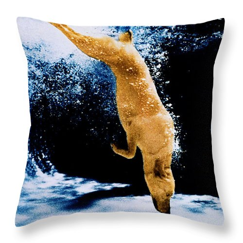 Pet Throw Pillow featuring the photograph Diving Dog Underwater by Jill Reger