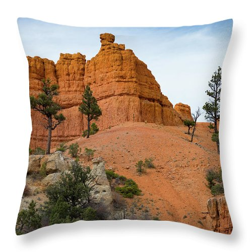 Dixie National Forest Throw Pillow featuring the photograph Dixie National Forest by Kathleen Scanlan