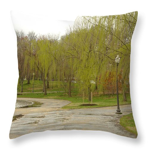 Landscape Park Washington Willow Tree Lake Throw Pillow featuring the photograph Dnrf0401 by Henry Butz
