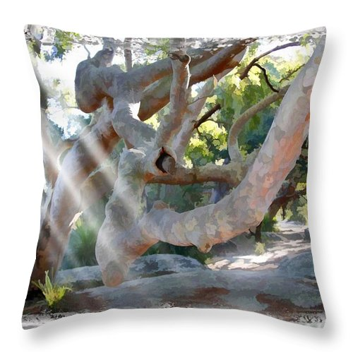 Trees Throw Pillow featuring the photograph Do-00044 Mount Ettalong by Digital Oil