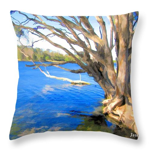 Avoca Throw Pillow featuring the photograph Do-00105 Avoca by Digital Oil