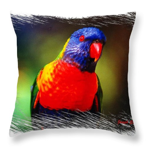 Birds Throw Pillow featuring the photograph Do-00153 Colourful Lorikeet by Digital Oil