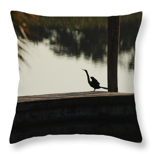 Reflections Throw Pillow featuring the photograph Dock Bird In Color by Rob Hans