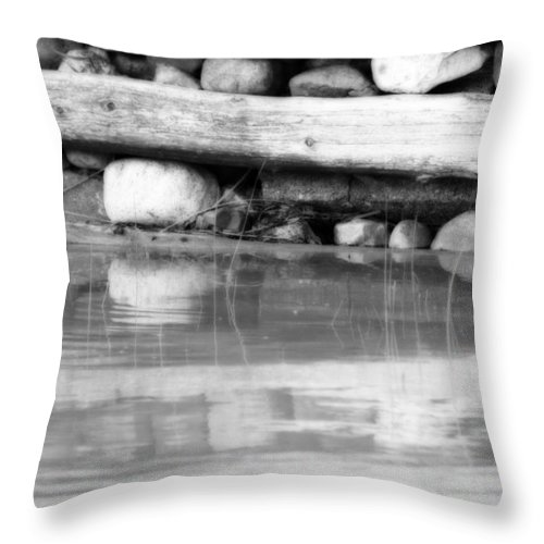 Dock Throw Pillow featuring the photograph Dock Cribs by Cathy Beharriell