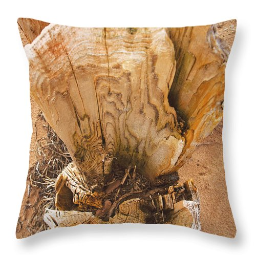 Dock Post Throw Pillow featuring the photograph Dock Post by Steve Somerville