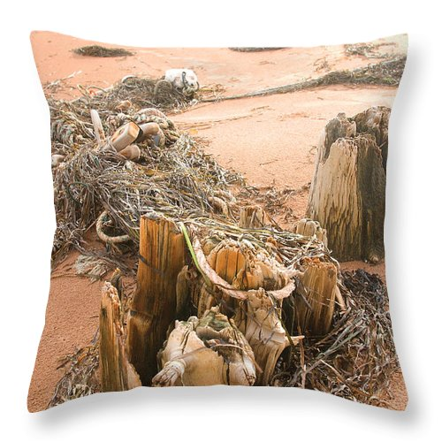 Dock Throw Pillow featuring the photograph Dock Posts And Nets by Steve Somerville