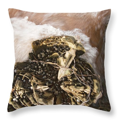 Dock Throw Pillow featuring the photograph Dockpost And Surf by Steve Somerville