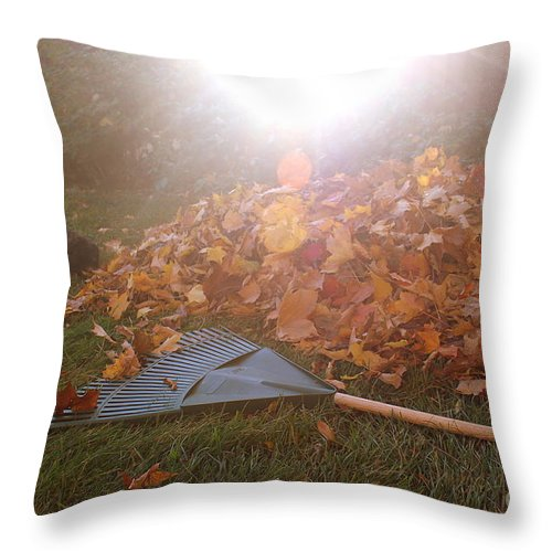 Raking Throw Pillow featuring the photograph Dog And Autumn Leaves by Samiksa Art