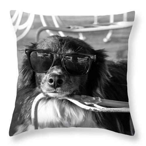 Dog With Sunglasses Throw Pillow featuring the photograph Dog Days Of Summer by Mary Ourada