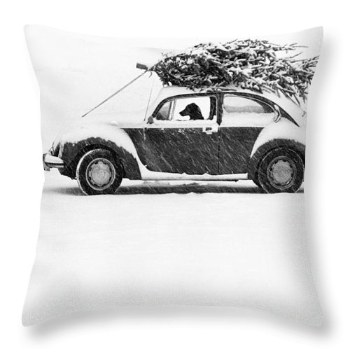 Animal Throw Pillow featuring the photograph Dog In Car by Ulrike Welsch and Photo Researchers