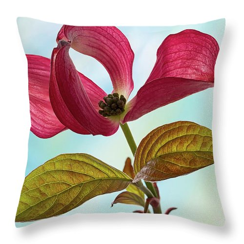 Floral Throw Pillow featuring the photograph Dogwood Ballet 4 by Shirley Mitchell