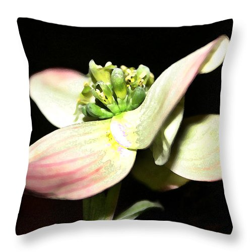 Landscape Throw Pillow featuring the photograph Dogwood Blossom by Mary Haber
