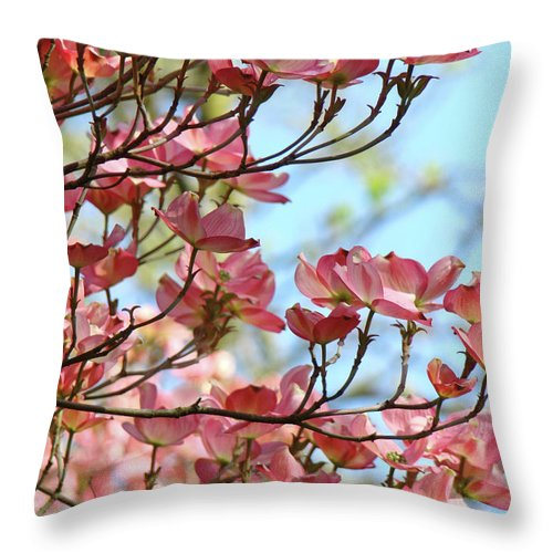 Dogwood Throw Pillow featuring the photograph Dogwood Flowering Trees Pink Dogwood Flowers Baslee Troutman by Baslee Troutman