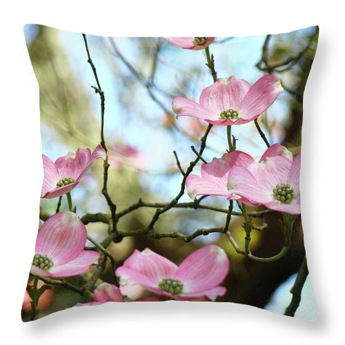 Dogwood Throw Pillow featuring the photograph Dogwood Flowers Pink Dogwood Tree Landscape 9 Giclee Art Prints Baslee Troutman by Baslee Troutman