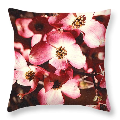 Dogwood Throw Pillow featuring the photograph Dogwood Harmony by Nancy Mueller