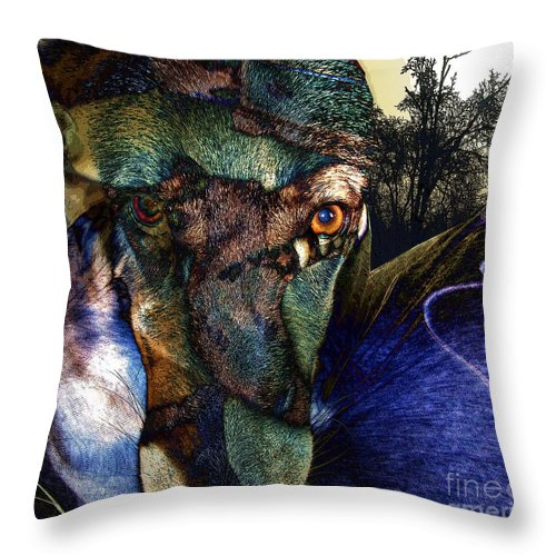 Dog Throw Pillow featuring the photograph Domesticated by Ron Bissett