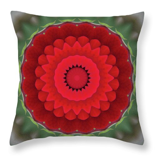 Don Juan Throw Pillow featuring the photograph Don Juan Kaleidoscope Carnation by Robyn Stacey
