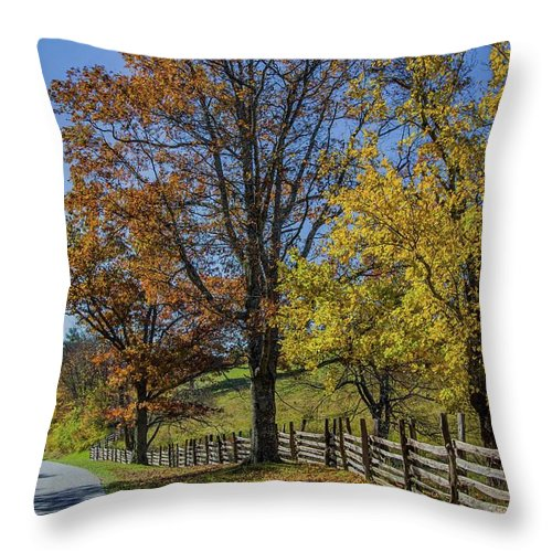Scenic Throw Pillow featuring the photograph Don't Fence Me In by Kevin Craft