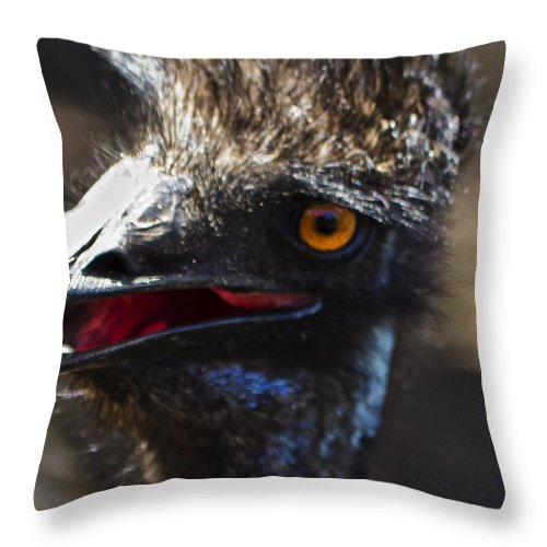 Emu Throw Pillow featuring the photograph Dont Mess With The Emu by Roger Wedegis