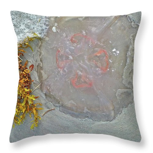 Jellyfish Throw Pillow featuring the photograph Don't Touch by Diana Hatcher