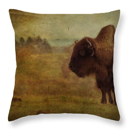 Bison Throw Pillow featuring the photograph Doo Doo Valley by Trish Tritz